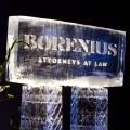Borenius 100 vuotta